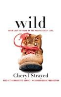Wild: From Lost to Found on the Pacific Crest Trail [ WILD: FROM LOST TO FOUND ON THE PACIFIC CREST TRAIL ] by Strayed, Cheryl (Author ) on Mar-20-2012 Compact Disc